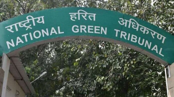 Damage from pollution no less than damage from other heinous crimes: NGT