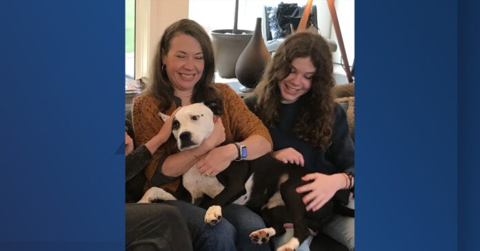 'Just don't take my dog': Leawood family in legal battle with city to keep dog