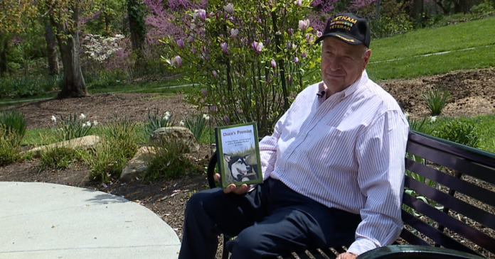Local Vietnam War veteran on a mission to rescue 50,000 dogs